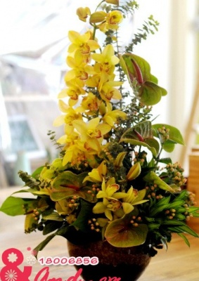 Bình hoa địa lan vàng.