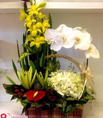 Giỏ hoa tông màu trắng vàng