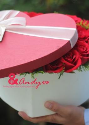 Hoa hồng trái tim