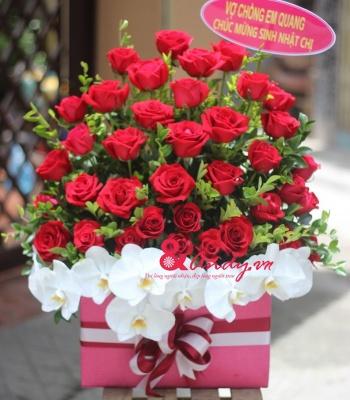 Giỏ hoa hồng đỏ