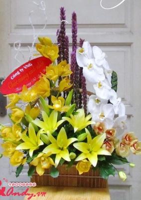 Giỏ hoa Lan -  Sang trọng