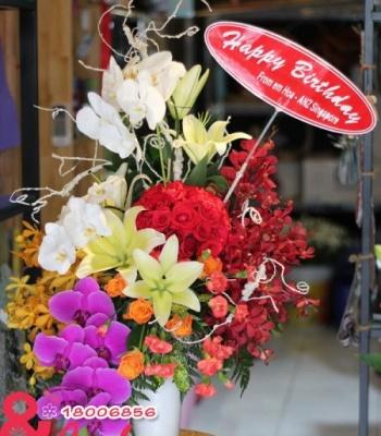 Hoa chúc mừng – Sang trọng