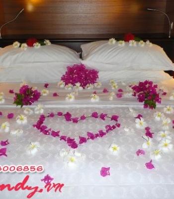 Hoa cưới 12513