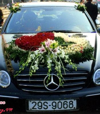 Hoa cưới 93520