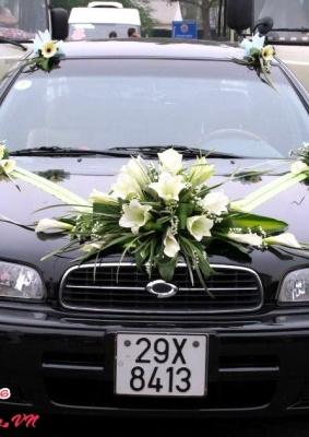 Hoa cưới 93521