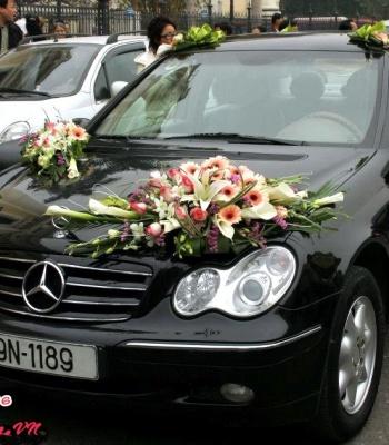 Hoa cưới 93527