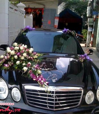 Hoa cưới 93534