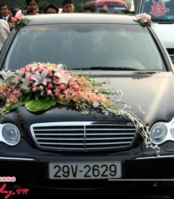 Hoa cưới 93535