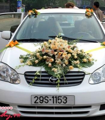 Hoa cưới 93536