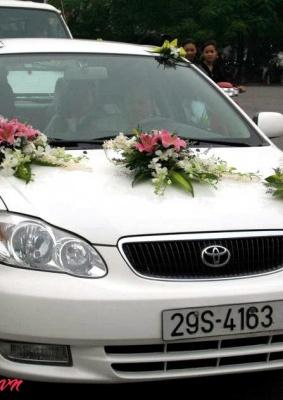 Hoa cưới xe hoa: 93546
