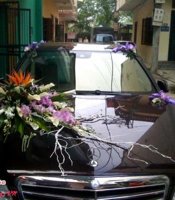 Hoa cưới xe hoa: 93548
