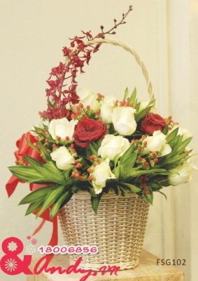 Hoa hồng trắng, đỏ