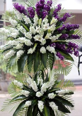 Hoa tang nuối tiếc
