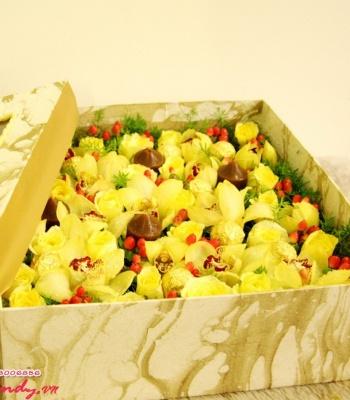 Hộp hoa Địa Lan Vàng