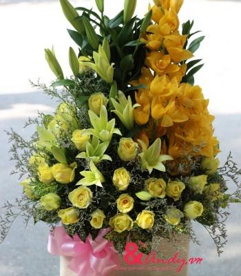 Hoa ly, địa lan