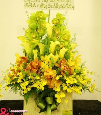 Vũ điệu hoa lan