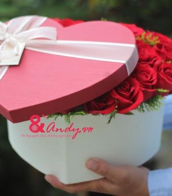 Hộp hoa hồng trái tim