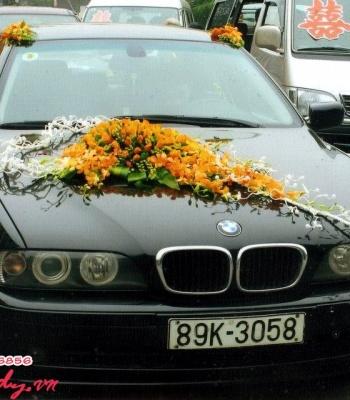 Hoa cưới 93529
